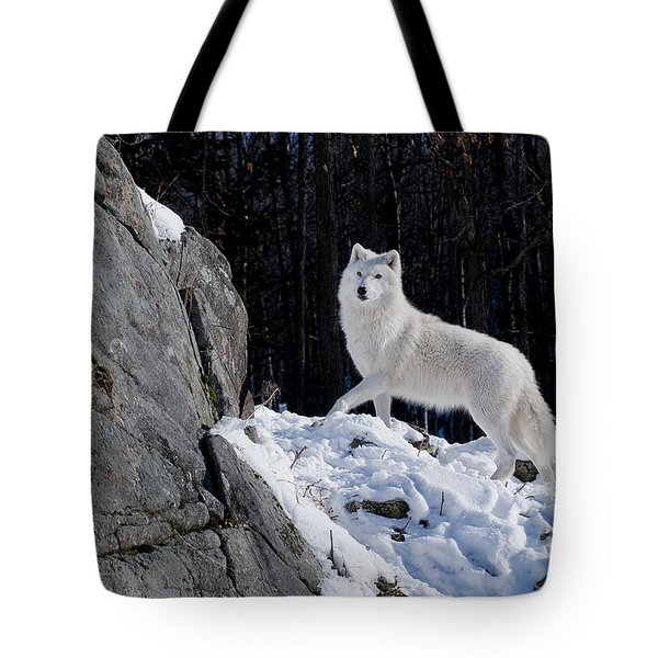 Tote Bag featuring the photograph Arctic Wolf On Rock Cliff by Wolves Only