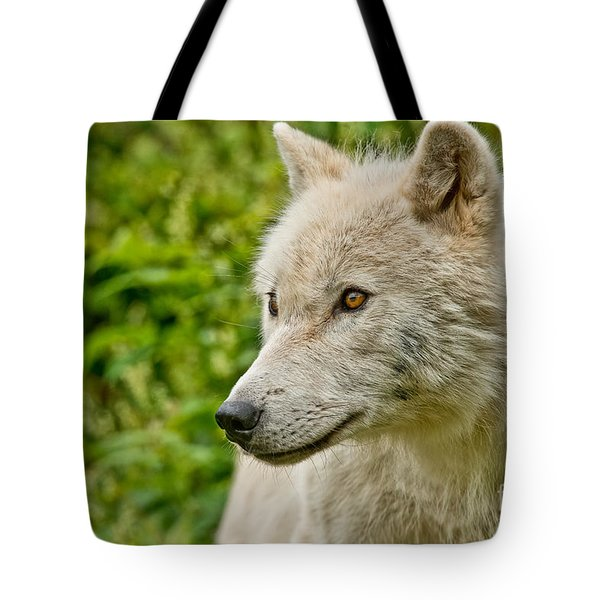 Arctic Wolf Pictures 241 Tote Bag