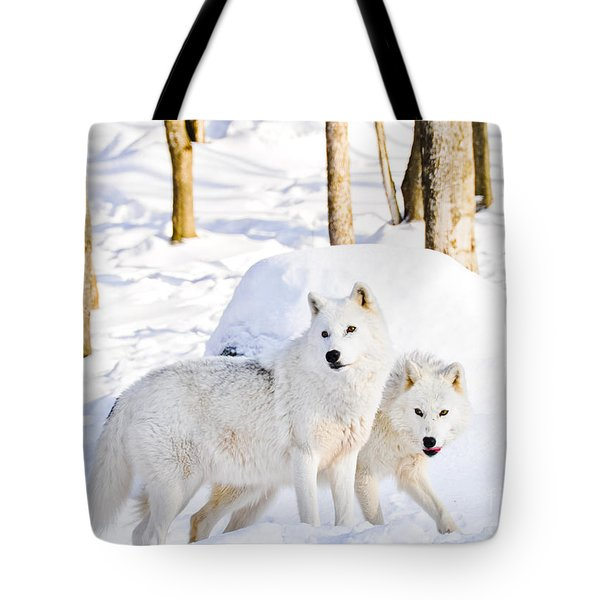 Arctic Wolves Tote Bag by Cheryl Baxter