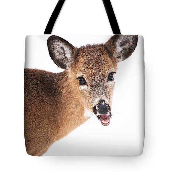 Are You Done Taking Pictures Tote Bag by Karol Livote