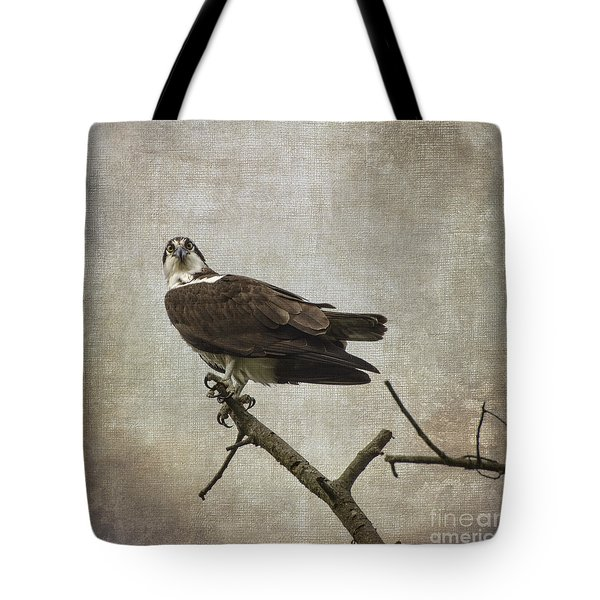 Are You Finished Tote Bag