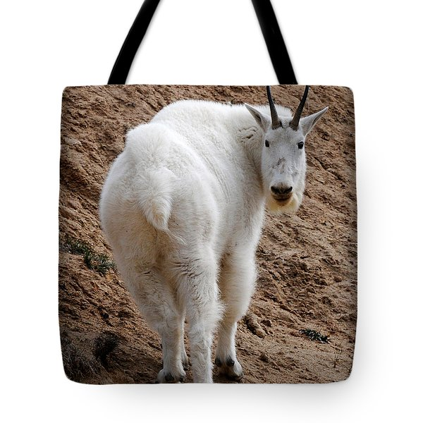 Tote Bag featuring the photograph Are You Following Me by Vivian Christopher