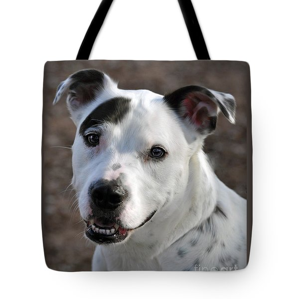 Tote Bag featuring the photograph Are You Looking At Me? by Savannah Gibbs