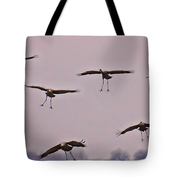 Tote Bag featuring the photograph Are You Sure This Is The Spot by Don Schwartz