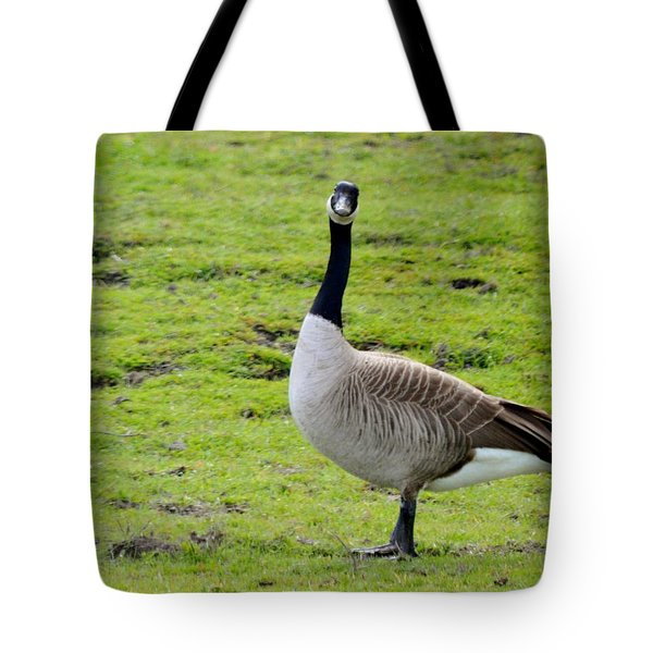 Are You Talking To Me Tote Bag by Barbara Snyder