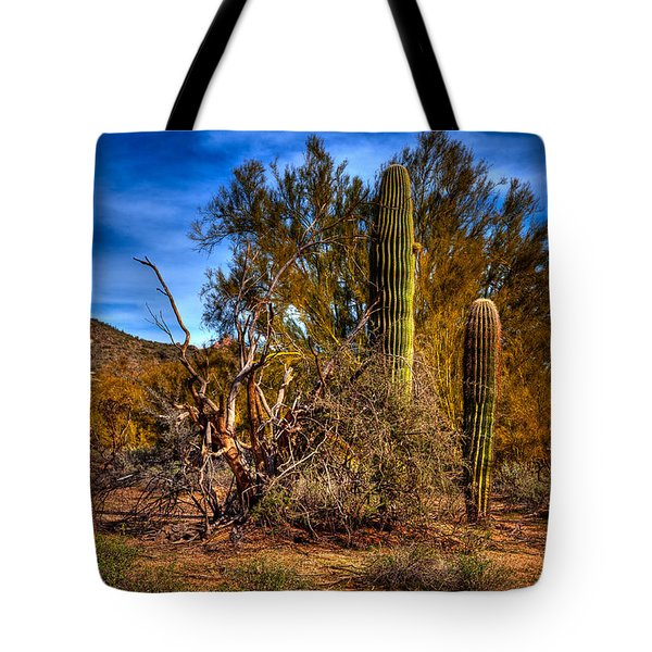 Arizona Landscape II Tote Bag by David Patterson