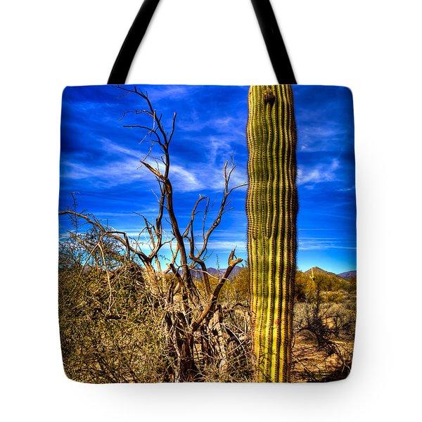 Arizona Landscape IIi Tote Bag by David Patterson