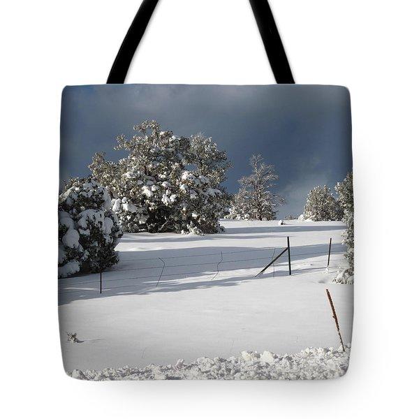 Arizona Snow 3 Tote Bag