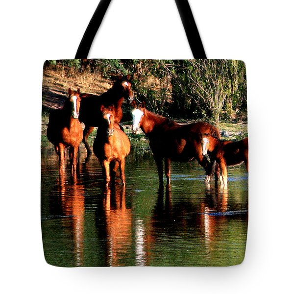 Arizona Wild Horses Tote Bag
