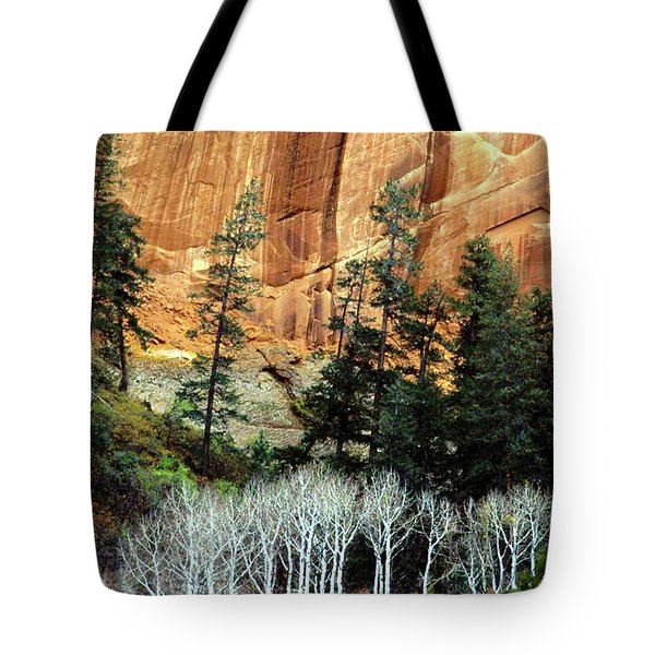 Arizona's Betatkin Aspens Tote Bag by Ed  Riche