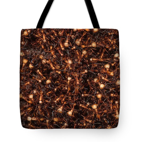 Army Ants Tote Bag by Art Wolfe