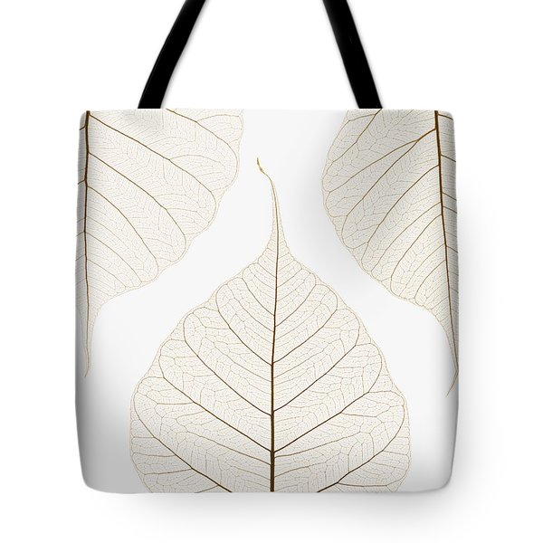 Arranged Leaves Tote Bag by Kelly Redinger