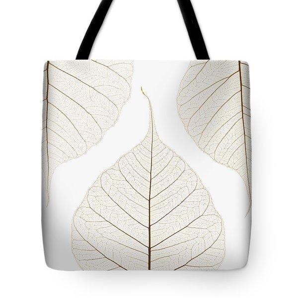 Arranged Leaves Tote Bag by Kelly Redinger