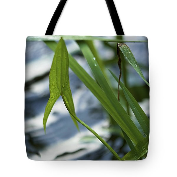 Tote Bag featuring the photograph Arrowhead - Wildflower In Water by Jane Eleanor Nicholas