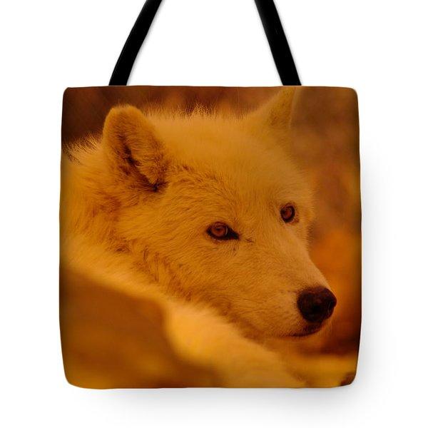 Artic Wolf  Tote Bag by Jeff Swan