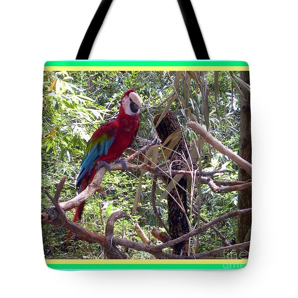 Tote Bag featuring the photograph Artistic Wild Hawaiian Parrot by Joseph Baril