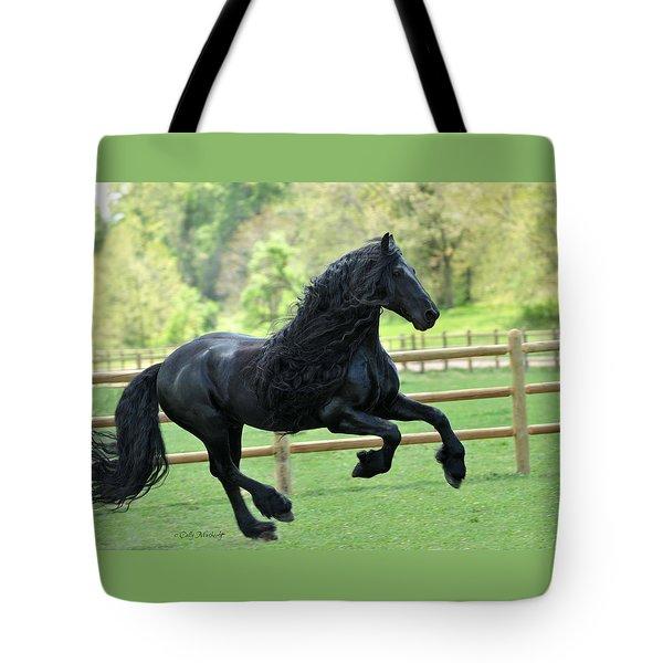 Artistry Tote Bag