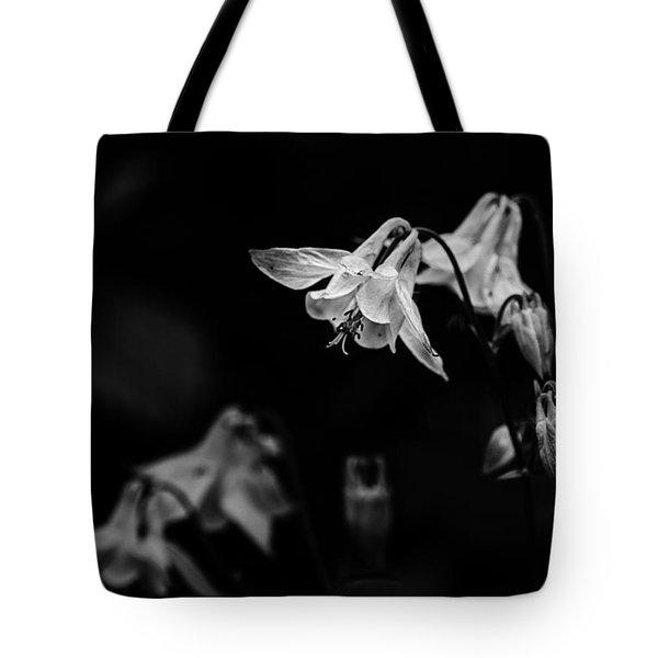 As Darkness Falls Tote Bag