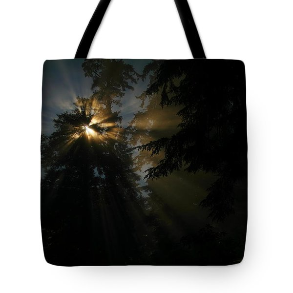 As If I Needed Some Inspiration Tote Bag by Jeff Swan