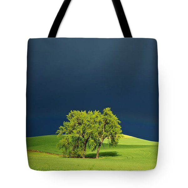 As The Sun Returns Tote Bag