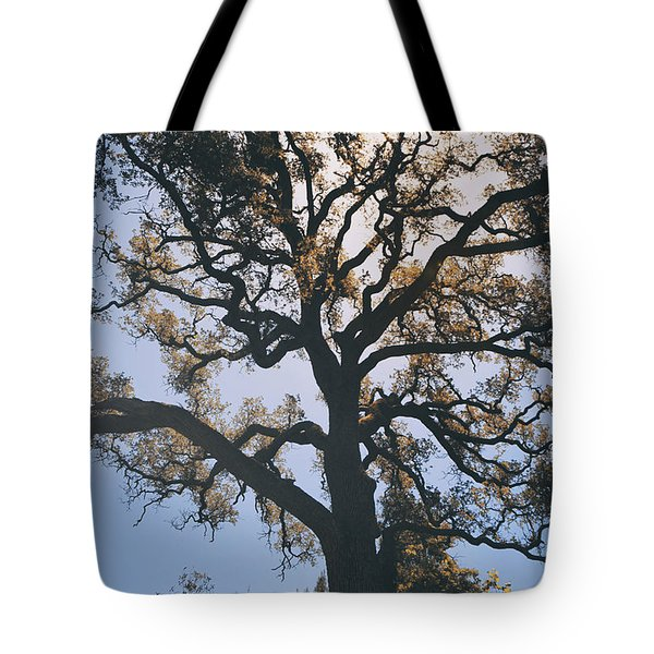 As We Grow And Change Tote Bag by Laurie Search