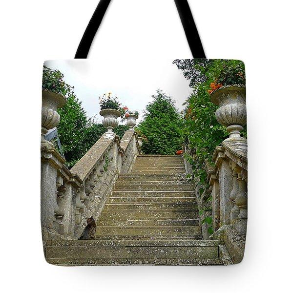 Ascending Garden Tote Bag