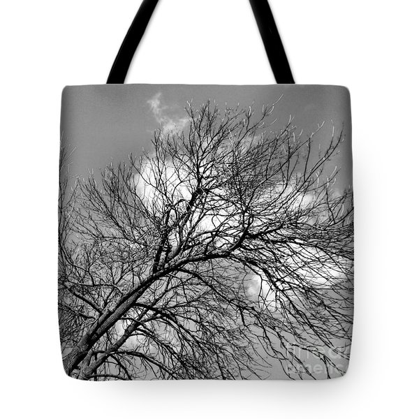 Tote Bag featuring the photograph Ash And Light by Robyn King