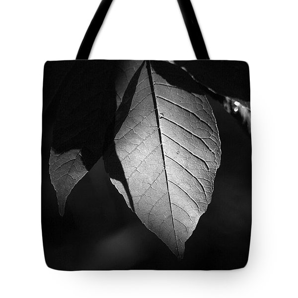 Ash Leaf Tote Bag