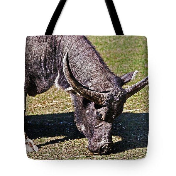 Asian Water Buffalo  Tote Bag by Miroslava Jurcik