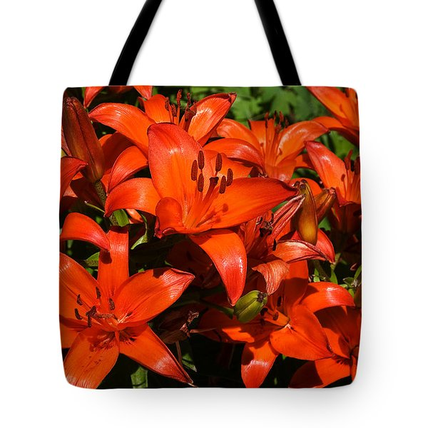 Tote Bag featuring the photograph Asiatic Lily by Sue Smith