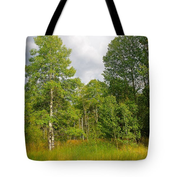 Tote Bag featuring the photograph Aspen And Others by Jim Thompson