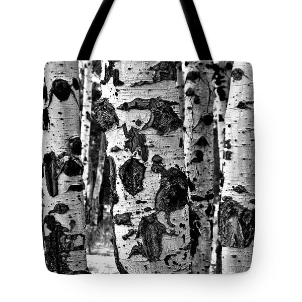 Tote Bag featuring the photograph Aspen Art by Mae Wertz