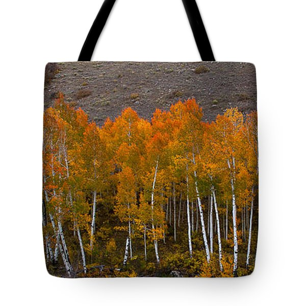 Aspen Band Tote Bag by Steven Reed