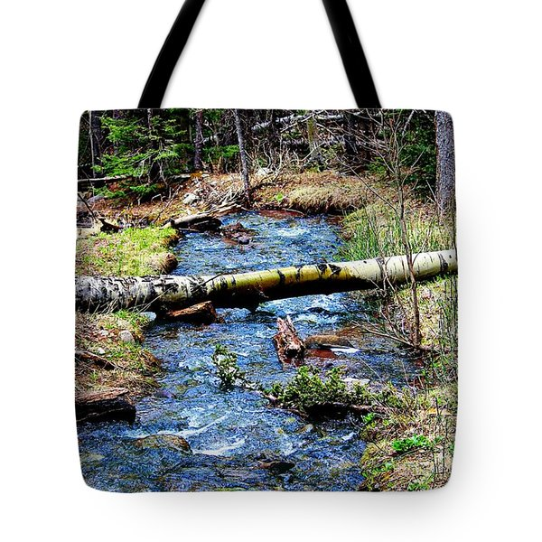 Tote Bag featuring the photograph Aspen Crossing Mountain Stream by Barbara Chichester