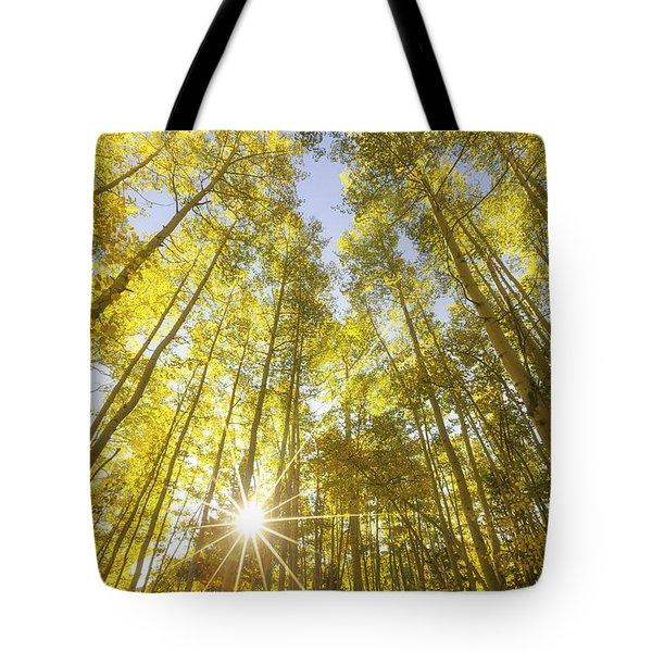 Aspen Day Dreams Tote Bag by Darren  White