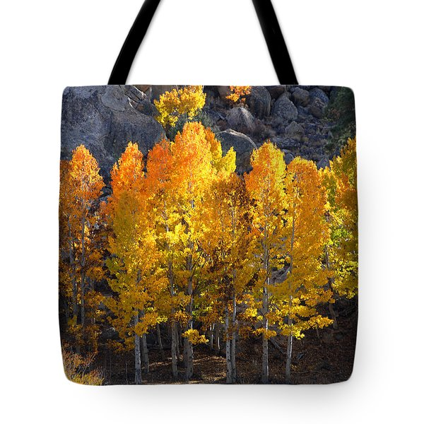 Tote Bag featuring the photograph Aspen Gold by Lynn Bauer
