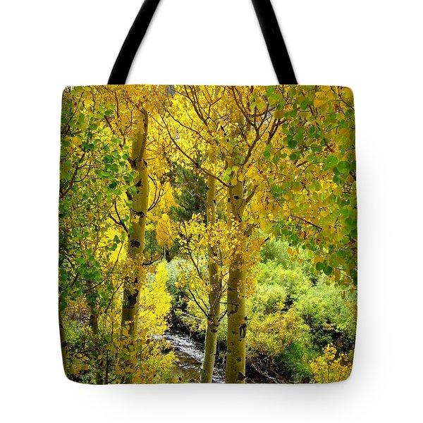 Tote Bag featuring the photograph Aspen Gold by Marilyn Diaz