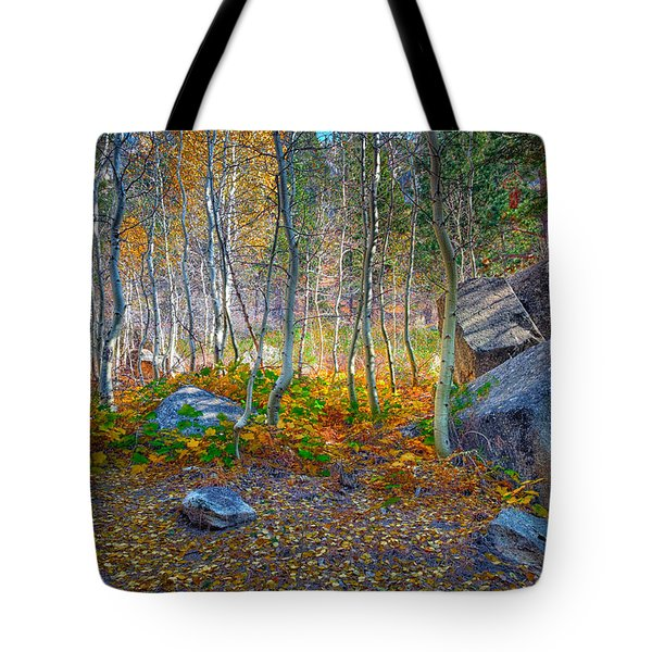 Tote Bag featuring the photograph Aspen Grove by Jim Thompson