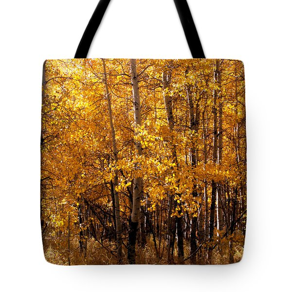 Aspen Grove Tahoe City Tote Bag
