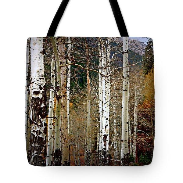 Aspen In The Rockies Tote Bag by Lynn Sprowl