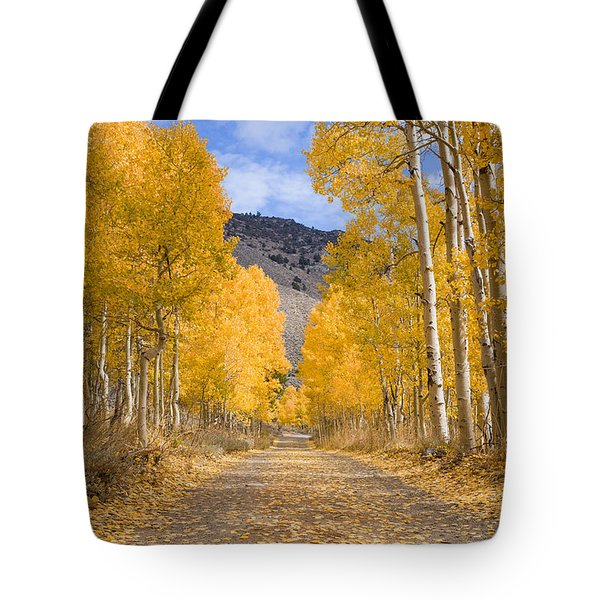 Aspen Lane Wide Crop Tote Bag