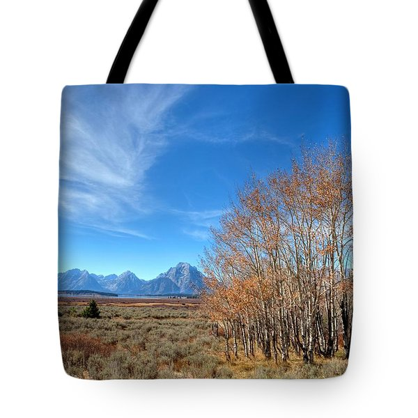 Tote Bag featuring the photograph Aspen Last Stand  by David Andersen