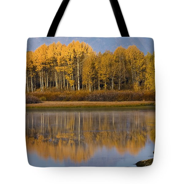 Tote Bag featuring the photograph Aspen Reflection by Sonya Lang