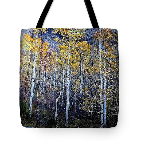Aspen Sunset Tote Bag by Karen Shackles