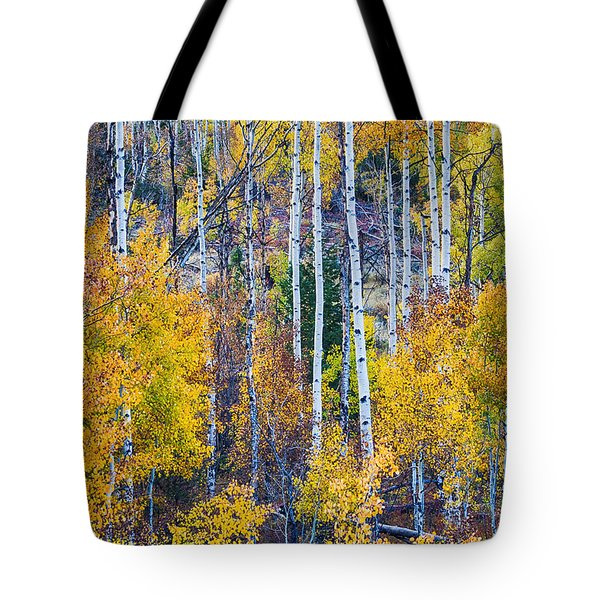 Aspen Tree Magic Cottonwood Pass Tote Bag by James BO  Insogna