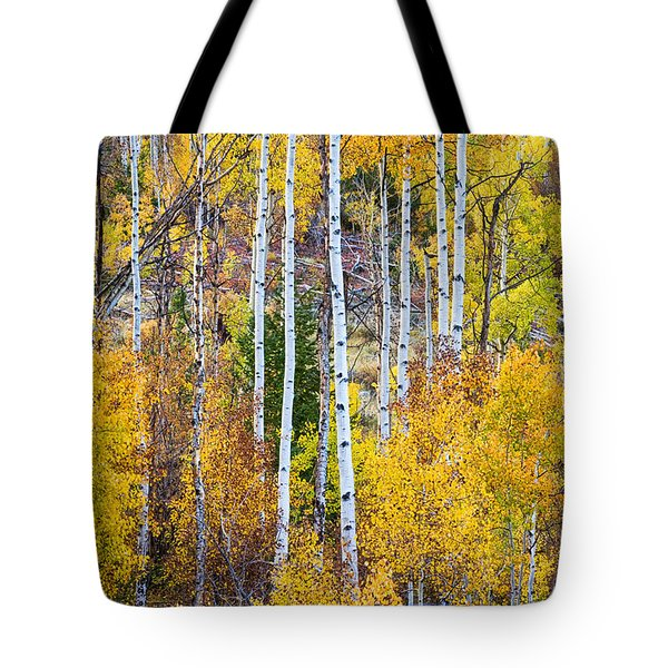 Aspen Tree Magic Tote Bag by James BO  Insogna