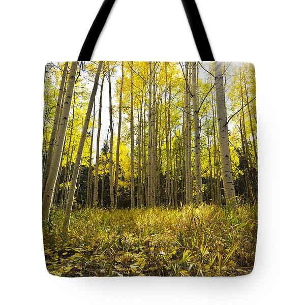 Aspen Trees Colorado Tote Bag