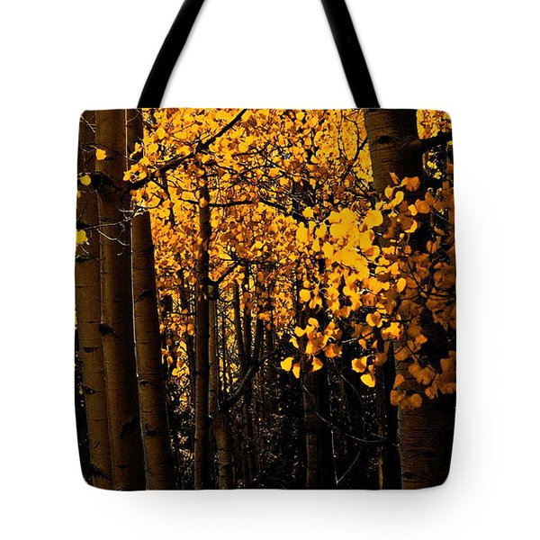 Aspen Woods Tote Bag