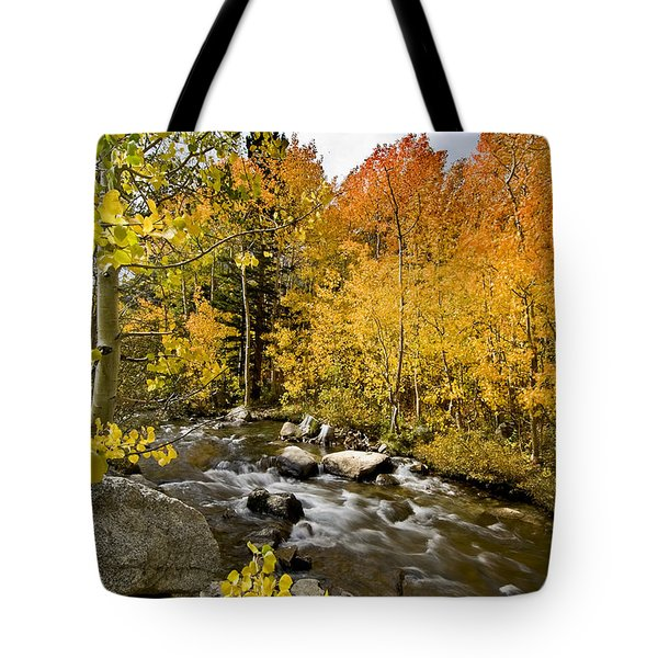 Aspens At Bishop Creek Tote Bag