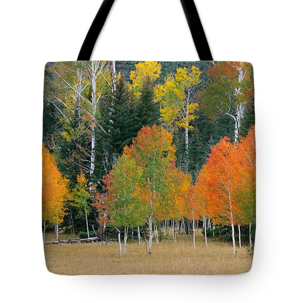 Aspens And Meadow-pan Tote Bag